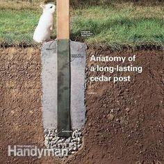 Did your fence posts rot at the bottom? Here's how to install new ones—and avoid the problems that made your old posts rot. #gardenfences #FenceLandscape