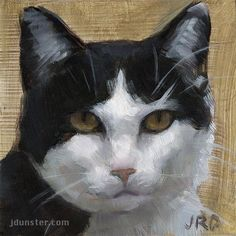 "Daily Paintworks - ""Cat Head B&W"" - Original Fine Art for Sale - © J. Dunster"