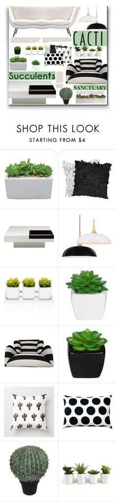 """""""Cacti and Succulents"""" by fassionista ❤ liked on Polyvore featuring interior, interiors, interior design, home, home decor, interior decorating, Whiteline Imports, Pillow Decor, Abigail Ahern and decor"""