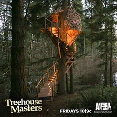 treehouse masters beehive - Google Search