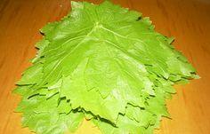 Αμπελόφυλλα (κληματόφυλλα): συντήρηση στην κατάψυξη - cretangastronomy.gr