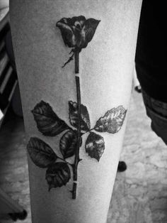 "My second tattoo. Depeche Mode album cover ""Violator""."