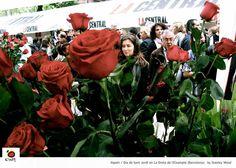 ¡Feliz Día de San Jordi! Celebrado el 23 de abril.  Foto de las Ramblas, Barcelona, España.  (foto: Stanley Wood, via See Spain en Facebook)