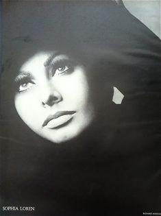 Sophia Loren, photo by Richard Avedon, Harper's Bazaar, Dec. Richard Avedon, Classic Hollywood, Old Hollywood, America Images, Sophia Loren Images, Cinema Tv, Italian Actress, Italian Beauty, Pin Up