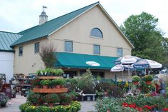Welcome to Shady Brook Farm where Fun is Always in Season! We are a working farm with pick-your-own crops, a Farm Market loaded with ...