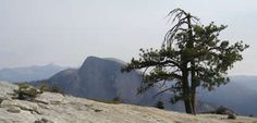 Yosemite National Park - above the rim, Tuolumne and the backcountry...