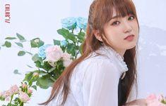 Photo album containing 12 pictures of IZ*ONE Kpop Girl Groups, Kpop Girls, Boy Groups, Yuri, Sakura Miyawaki, Fandom, Japanese Girl Group, Soyeon, The Wiz