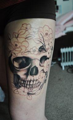 Skull, partial sketch