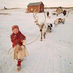 Lapland (49 pieces)