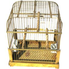 50s bird cage, my aunt always had a parakeet! The birds could be bought at Woolworths for 59 cents!!!
