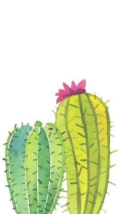 Watercolor Painting Cactus. Tap to see more Beautiful Illustration iPhone Wallpapers and Lockscreen background! Plants and nature. - @mobile9