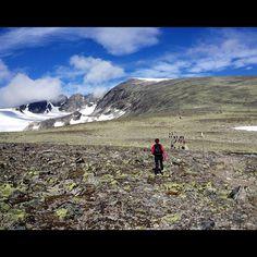 """@apadna's photo: """"Kan skryte av å ha besteget Norges 2. største fjelltopp!!  #Hjerkinn #snøhetta #mountain #snow #Norway"""""""
