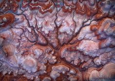 Title: Mother Brain Artist: alexnoriega ( http://ift.tt/2g2JRIg ) Uploaded Date: November 18, 2016 at 05:02AM Description: I've been captivated by the geology of the Colorado Plateau for years, but I've often found it difficult to fully represent just how crazy it really is