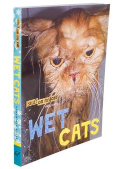 Wet Cats: Coffee table book