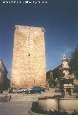 Castillo de Mengibar Jaen .Spain .