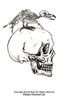 #arts #bird #darkness #edgarallanpoe #goth #human #literature #nevermore #poem #prince #raven #skull #theraven #work #skeleton