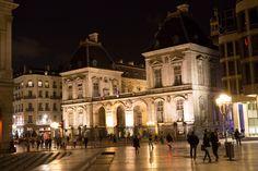 Hôtel de ville, Lyon Lyon, Notre Dame, Louvre, Building, Travel, Viajes, Buildings, Destinations, Traveling