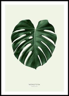 Green monstera, affiche dans le groupe Affiches / Formats / 30x40cm chez Desenio AB (8147)