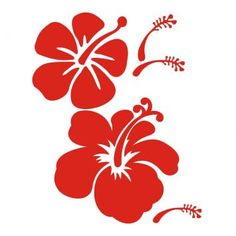 Flor Havaiana