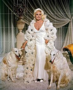 Carroll Baker as Harlow: Borzois add a touch of '30s elegance