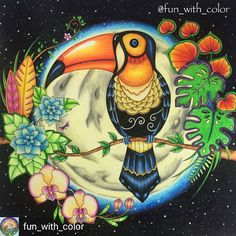 @Regrann_App from @fun_with_color - Toucan from Johanna Basford's Magical Jungle. I used Faber-Castell Polychromos, Faber-Castell Albrecht Durer, gelly roll and signo gel pens. #johannabasford #magicaljungle #selvamagica #fabercastell #polychromos #albrechtdurer #magicaljunglebooks #johannabasford_repost #bayan_boyan #adultcoloring #adultcolouring #coloring #mycreativeescape #arte_e_colorir #coloring_secrets #coloringmasterpiece #shadyas #divasdasartes #colorindolivrostop #artecomoterapia…