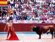 Notiferias Toros en Venezuela y el Mundo: PONTEVEDRA: Juli, señor de Galicia