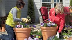 Ask Martha: Container Gardening Videos | Tv How to's and ideas | Martha Stewart