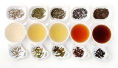 A teafajták közül is kitűnik néhány, aminek a fogyasztása egészségesebb, mint a többié. Ismerkedj meg a legegészségesebb teák, a szervezetre gyakorolt jótékony hatásaival.