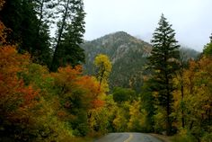 20 Things to Do in Salt Lake City Before You Die- Alpine Loop, perfect activity for a fall trip