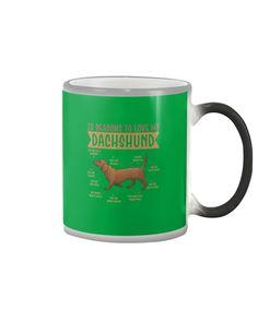10 Reasons To Love Dachshund Best Dog - Kelly dachshund nursery, miniature dachshund puppies, puppy dachshund #dachshundsappreciation #dachshundsforever #dachshundsinparadise, dried orange slices, yule decorations, scandinavian christmas Dachshund Quotes, Dachshund Shirt, Dachshund Gifts, Funny Dachshund, Dachshund Puppies, Cat Quotes, Animal Quotes, Dog Shirt, Funny Quotes