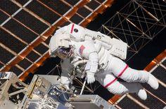 heights, vertical space, brain map, spatial orientation, brain cells, neurons, map, map cells, mental map, orientation, pilots, astronauts, spacewalk,