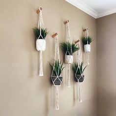 Thanks so much for your stay in our shop, we are very appreciated for your shopping small and kind support in advance !!!Life is better with more plants which can add characters to your home, purify your indoor air & get more closer to the nature. These set of 6 pack macrame plant hangers are meticulously hand-crafted which is the best choice for plant ladies & plant lovers to arrange their plants.-Shipping- Shipped within 1-3 days after purchased. An uploaded tracking no. to check package… Macrame Plant Holder, Macrame Plant Hangers, House Plants Decor, Plant Wall Decor, Plants In Bedroom, Wall Plant Hanger, Plants On Walls, Air Plants, Cactus Plants