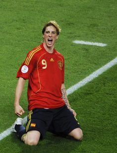 2 goals against Ireland today. Fernando Torres, love him!