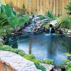 Flagstone waterfall With two waterfalls—one tumbling down a rocky bank and the other streaming from an urn—this pond fills the backyard with the sound of water. Broad flagstones near the water's edge invite closer inspection. If young children will be visiting your garden, be sure to restrict access to any pond or pool area with fencing and a locking gate.