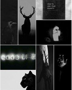 Animals In You #aesthetic #moodboard #animalsinyou