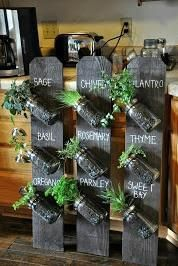 Whether you live in a big city or someplace that gets cold 9 months out of the year, indoor herb gardens provide so many benefits. They purify the air in your h #PalletGarden