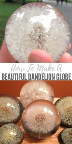 How To Make A Beautiful Dandelion Globe - These actually sell for 75 bucks so if you get good at it you could sell some on the side or make them for presents. They truly are amazing crafts to sell How To Make a Beautiful Dandelion Paperweight Globe Cute Diy Crafts, Kids Crafts, Creative Crafts, Diy Crafts To Sell, Diy Christmas Crafts To Sell, Diy Jewelry To Sell, Upcycled Crafts, Sell Diy, Diy Projects To Sell