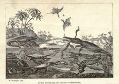 Ancient Monsters of the Dorsetshire Coast