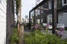 Beste afbeeldingen van moderne tuin van raaijen hoveniers