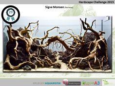 1º Nordic Scapers Hardscape Contest – NSHC 2015 | AquaA3 Aquarismo Aquarium Fish Tank, Aquarium Ideas, Aquascaping, Aquarium Landscape, Betta, Hardscape Design, Norway, Home Improvement, Cane Corso