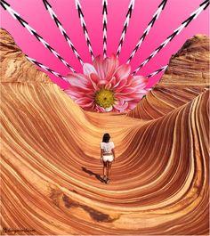 Collage psicodelico.  De una imagen del desierto se busca dar vida psicodelica con imagenes y edición de estas, que no suelen ser habituales. Photoshop, Hand Fan, Home Appliances, Collage, Scenery, Wilderness, Life, House Appliances, Collages