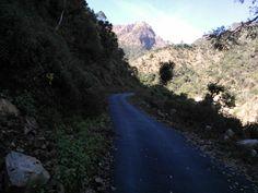 Dehradun in Uttarakhand