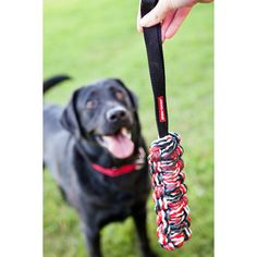At Last, A Durable Toss and Tug Dog Toy!  The EzyDog Beaver Tail is not only made to last, it is also made for water.