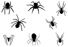 Eight Black Spider Silhouette Vector