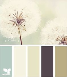 Possible paint color scheme for master bedroom