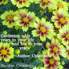 Garden Sayings