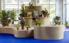 Laboratory environments: spaces for making / displaying / testing @ Birkbeck University, London