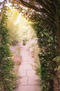 Nature Photography -  The Secret Garden, Travel Landscape Photograph, Magical Garden in England, Wall Decor- GeorgiannaLane