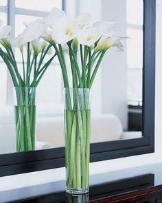 Elegant +Tall Calla Lilies