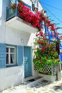 Mykonos House .. How the Greek grow flowers... ;)